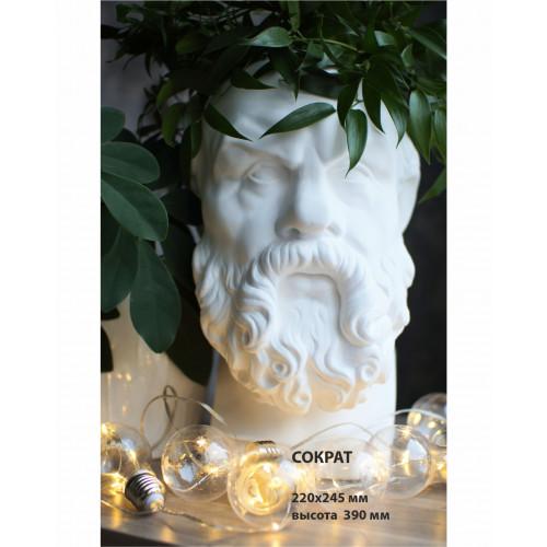 Кашпо Сократ